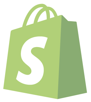 shopify store development south africa